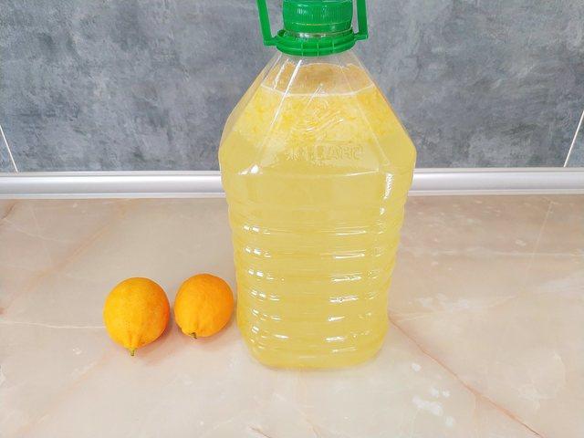5 литров лимонада из двух лимонов – пошаговый рецепт с фотографиями