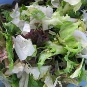 Кисло-сладкий салат с семгой – пошаговый рецепт с фотографиями