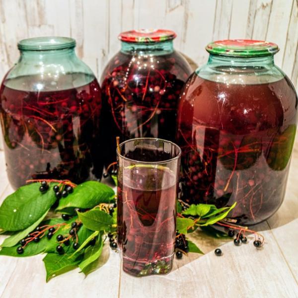 Домашний компот из свежей черемухи на зиму – пошаговый рецепт с фотографиями