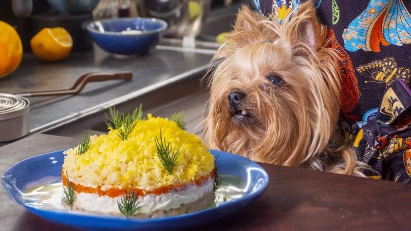 Как сделать салат Мимоза еще вкуснее.