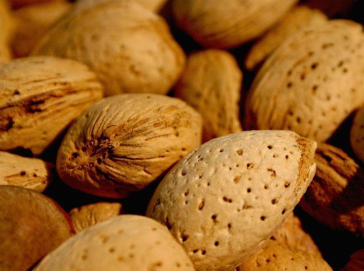 13 продуктов с самой высокой концентрацией питательных веществ