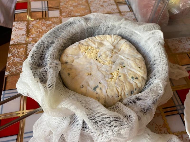 Готовлю сыр за 10 минут, из трех ингредиентов! Здесь я больше не покупаю в магазинах!