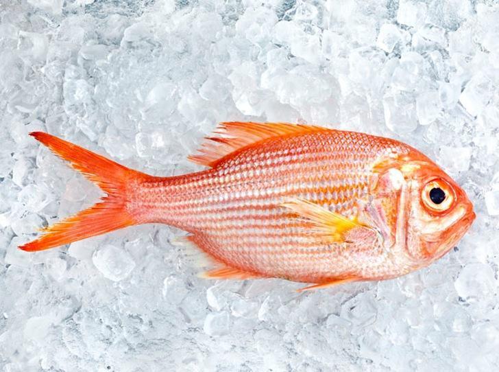 10 видов рыбы, которую лучше не есть